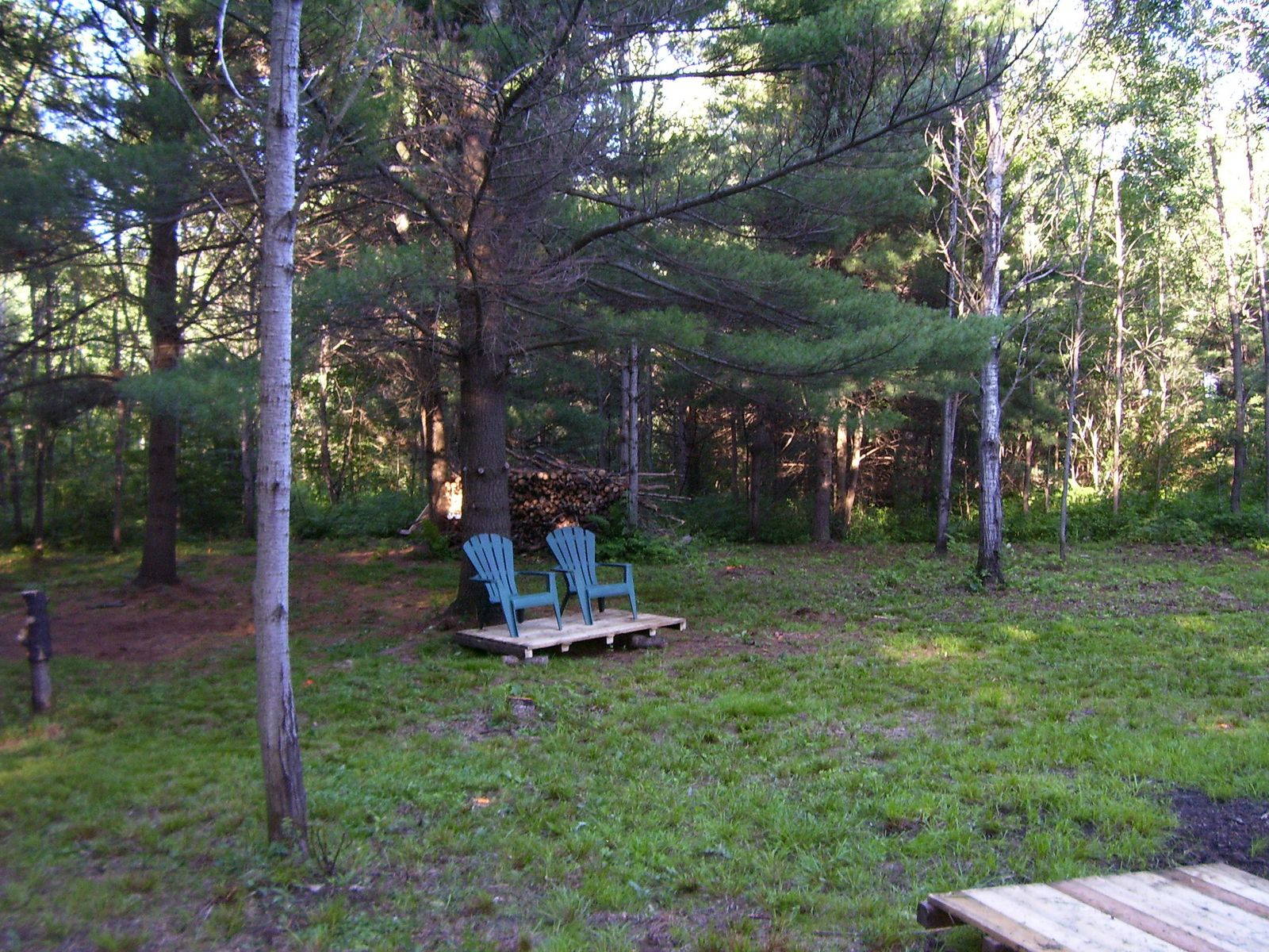 Doe Lake Gravenhurst Muskoka Property For Sale ANother View of Clearing