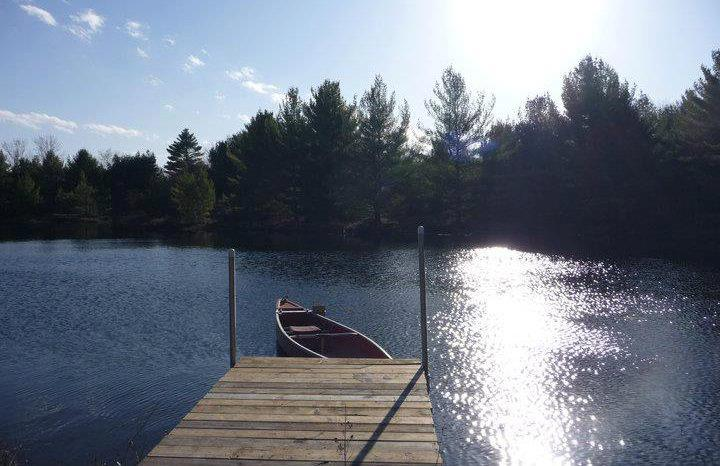 Doe Lake Gravenhurst Muskoka Property For Sale Clearing View